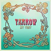 Sit Tight by the Yarrow