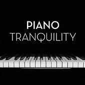 Piano Tranquility von Various Artists