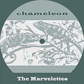 Chameleon von The Marvelettes