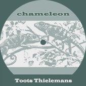 Chameleon von Toots Thielemans