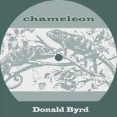 Chameleon by Donald Byrd