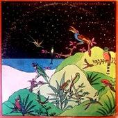 Pájaros y Estrellas de Frank Quintero