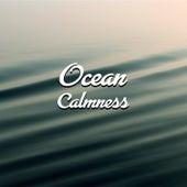 Ocean Calmness – Healing Waves, Nature Sounds, New Age Relaxation Music, Spirit Journey de Sounds Of Nature