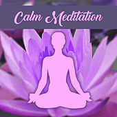 Calm Meditation – Pure Relaxation, Sounds of Nature, Ocean Waves, Birds, Meditation Music, Background Music for Yoga, Relaxation Music de Zen Meditation and Natural White Noise and New Age Deep Massage