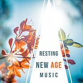 Resting New Age Music – Calming Sounds of Nature, Peaceful Mind, Time for Relax de Nature Sounds Artists