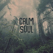 Calm Soul – Nature Sounds for Relaxation, Soothing Noise, Restful Waves, Singing Birds de Sounds Of Nature
