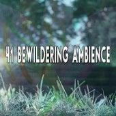 41 Bewildering Ambience von Entspannungsmusik