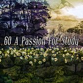 60 A Passion For Study by Classical Study Music (1)