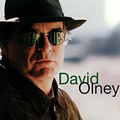 Real Lies by David Olney