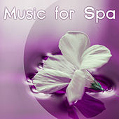 Music for Spa –  Serenity New Age Music, Massage Music, Spa, Wellness, Pure Nature Sounds de Zen Meditation and Natural White Noise and New Age Deep Massage