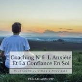 Coaching n°6 L Anxiété Et La Confiance en Soi (Pour Guérir Du Stress & Angoisses) von Fabian Laumont