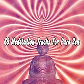 65 Meditation Tracks For Pure Zen de Nature Sounds Artists