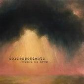 Wound so Deep van The Correspondents