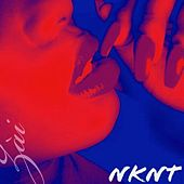 NKNT (No Kissing No Telling) by Zài