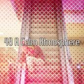 48 A Calm Atmosphere by Deep Sleep Music Academy