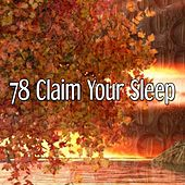 78 Claim Your Sleep by Relaxing Spa Music