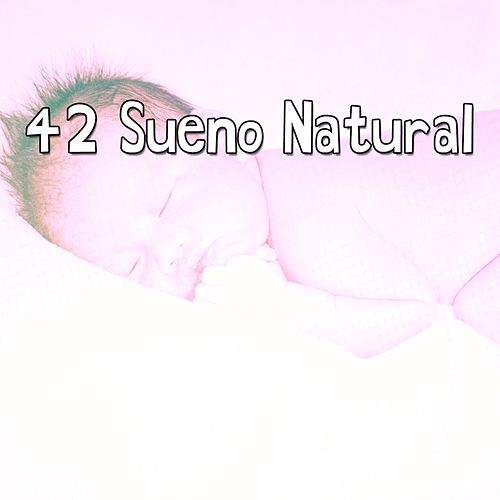 42 Sueno Natural de Smart Baby Lullaby