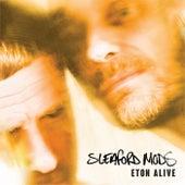 Eton Alive von Sleaford Mods