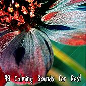 48 Calming Sounds For Rest von Best Relaxing SPA Music