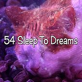 54 Sleep To Dreams de White Noise Babies