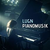 Lugn piano musik by Various Artists