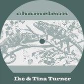Chameleon von Various Artists