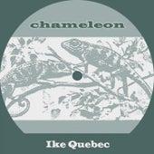Chameleon by Ike Quebec