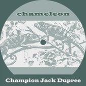 Chameleon von Champion Jack Dupree