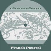 Chameleon von Franck Pourcel