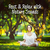 Rest & Relax with Nature Sounds – New Age Nature Music Perfect for Meditation, Yoga Training & Relaxing de Zen Meditation and Natural White Noise and New Age Deep Massage