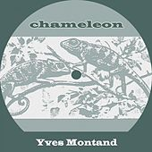 Chameleon by Yves Montand