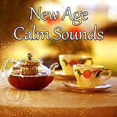 New Age Calm Sounds – Relaxing New Age Music, Nature Sounds, Spirit Free, Stress Relief de Sounds Of Nature