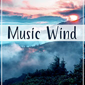 Music Wind – Tumbleweeds, Small Insects, Indian Summer, Gossamer, Dropping Leaves, Autumn Colors, Time of Reflection von Soothing Sounds