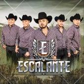 Necesito una Compañera by Grupo Escalante