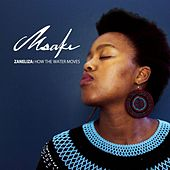 Zaneliza: How the Water Moves de Msaki