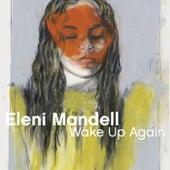 Circumstance by Eleni Mandell