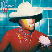 House Of Glass de Cage The Elephant