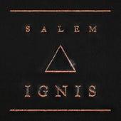 Ignis von Salem
