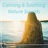 Calming & Soothing Nature Sounds – Relaxing Sounds to Rest, Music to Calm Down, New Age Music, Healing Waves von Soothing Sounds