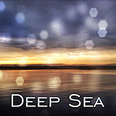 Deep Sea – Water Waves of Calmness, Healing New Age Vibes, Soft Music, Rest & Relax de Nature Sounds Artists