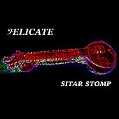 Sitar Stomp by Delicate