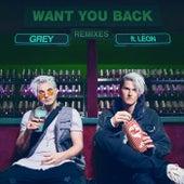 Want You Back (Remixes) von Grey & LÉON