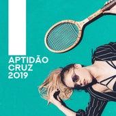 Aptidão Cruz 2019 by HEALTH