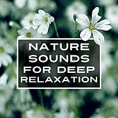 Nature Sounds for Deep Relaxation – Calming Music to Rest, New Age Music, Stress Relief, Inner Silence de Sounds Of Nature