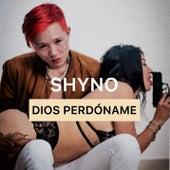 Dios Perdóname van Shyno