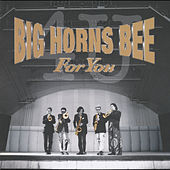FOR YOU by Big Horns Bee