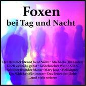 Foxen bei Tag und Nacht von Various Artists