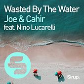 Wasted by the Water de Joe