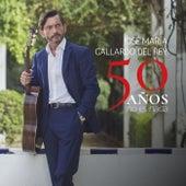 50 Años No Es Nada de José Maria Gallardo del Rey