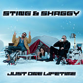 Just One Lifetime de Sting